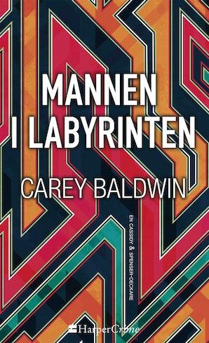 Mannen i labyrinten book image