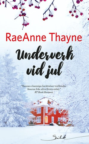Underverk vid jul book image
